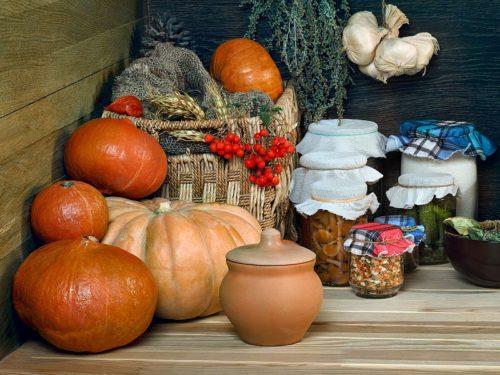 Spiżarnia pełna owoców i warzyw